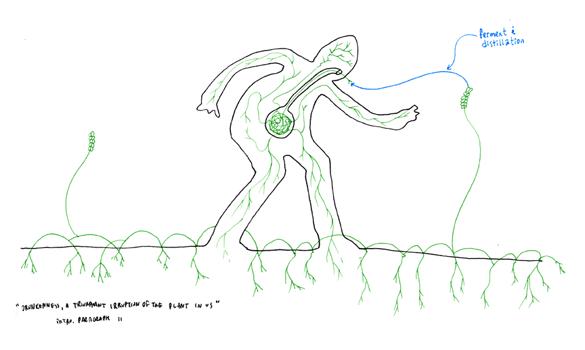「序 リゾーム」 - 第10パラグラフ